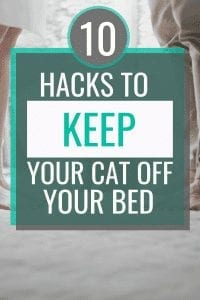 10 hacks to keep your cat off your bed #cathack #cathowto #understandingcat #cattraining